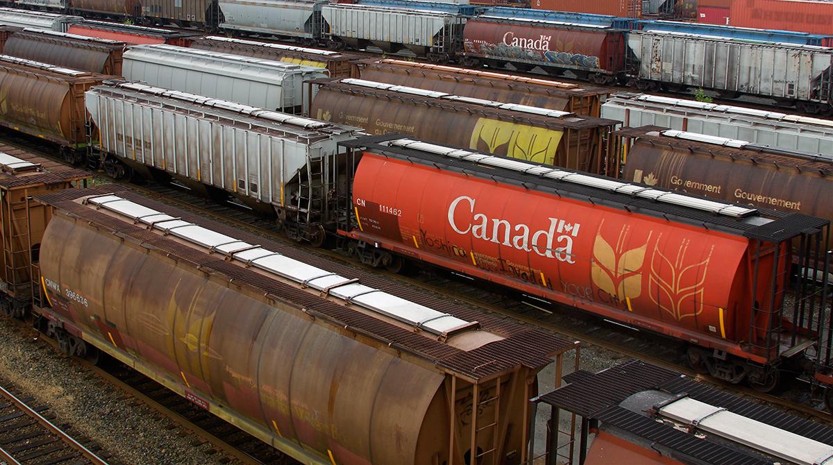 зерновые вагоны Канады