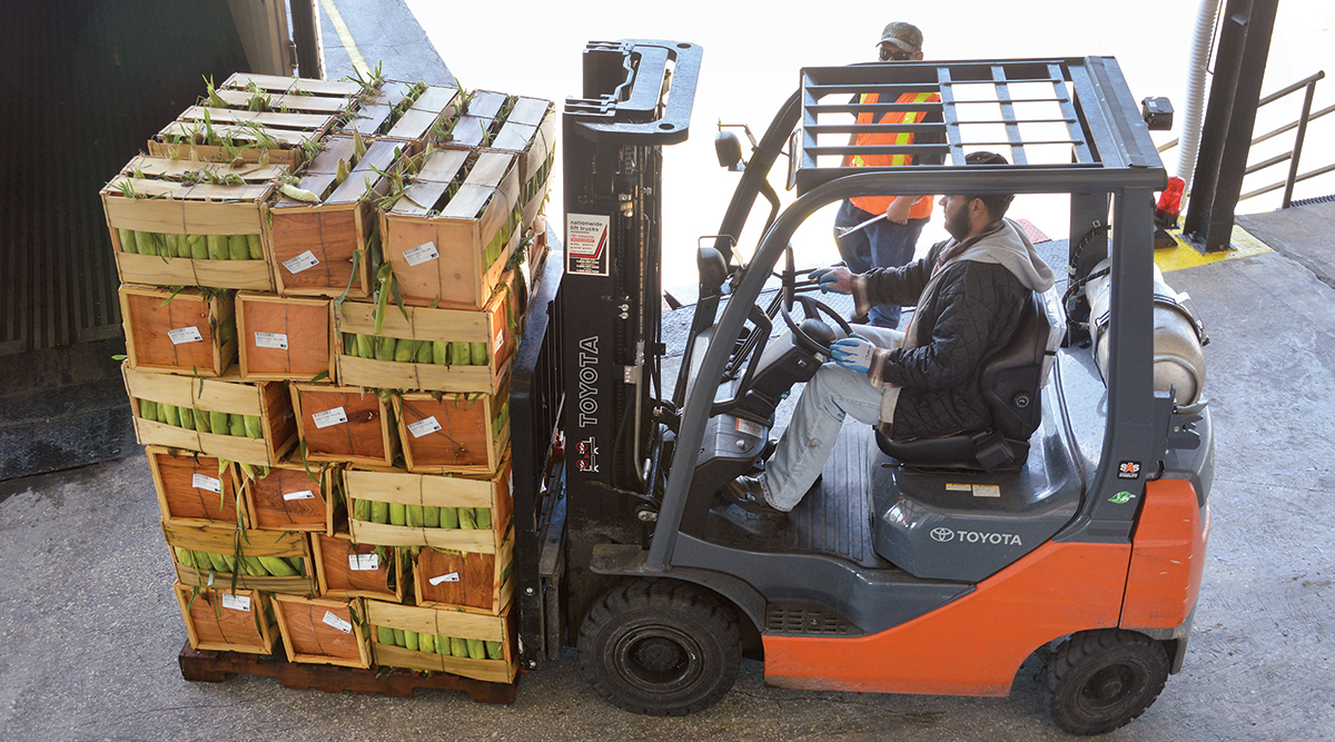 A forklift moves pallets of yellow sweet corn into a refrigerated truck.