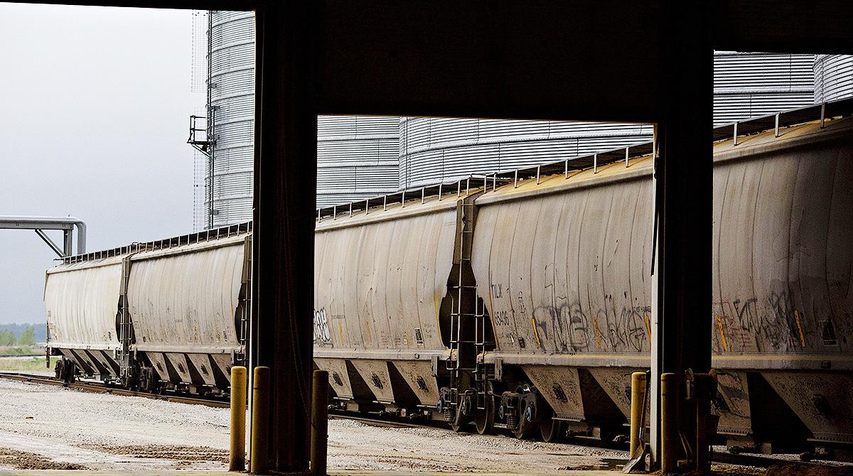 Grain rail cars on tracks