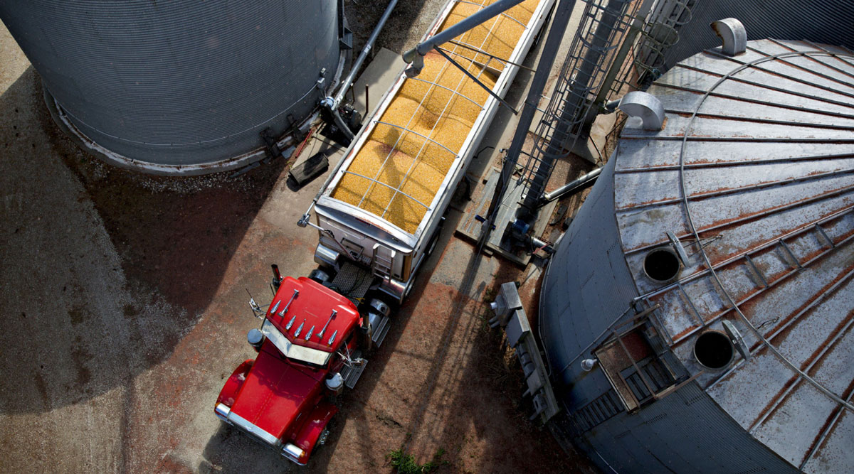 A truck hauls a load of corn between grain bins on a farm in Illinois during harvest.