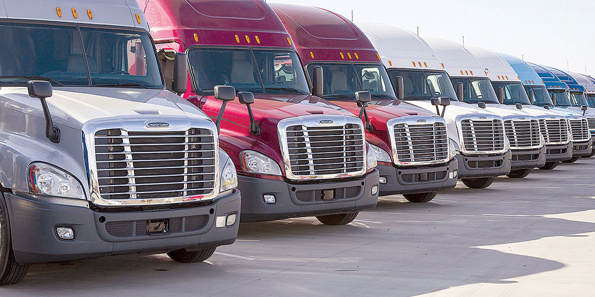 Freightliners on lot