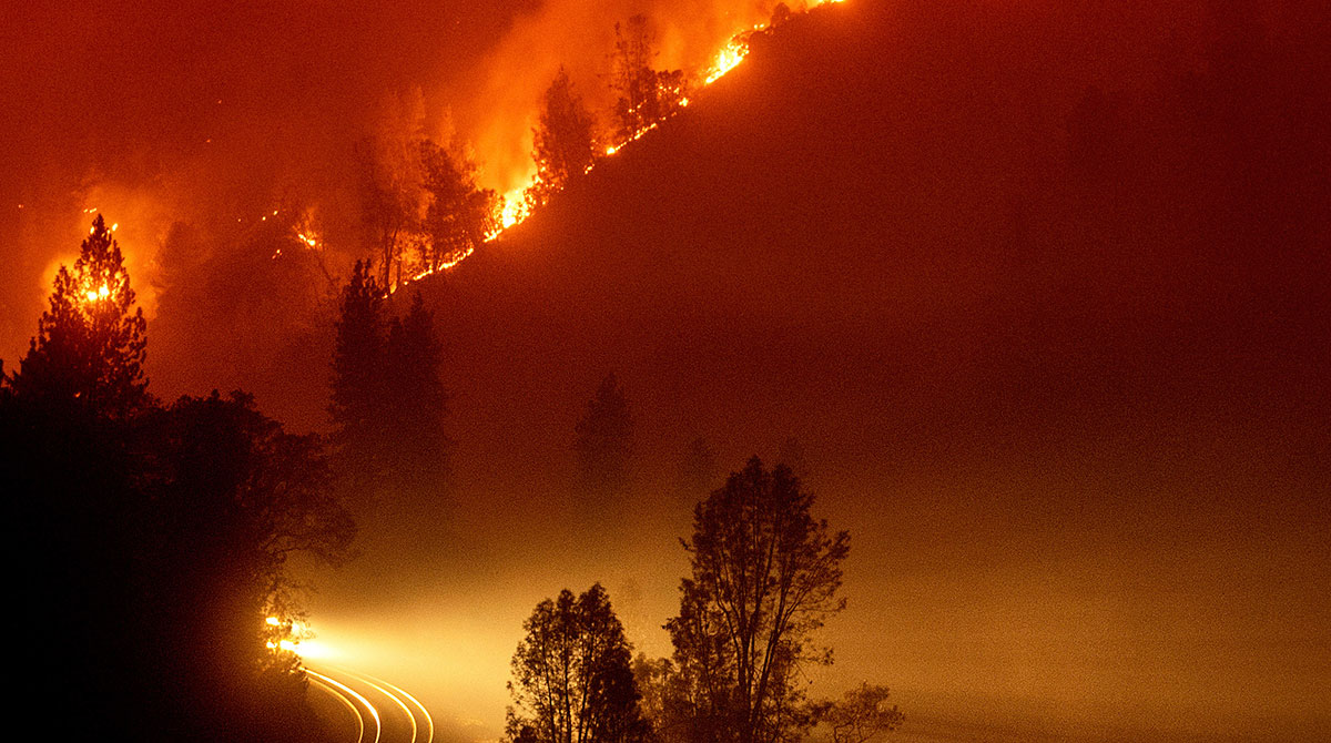 Delta Fire burning in the Shasta-Trinity National Forest, Calif.