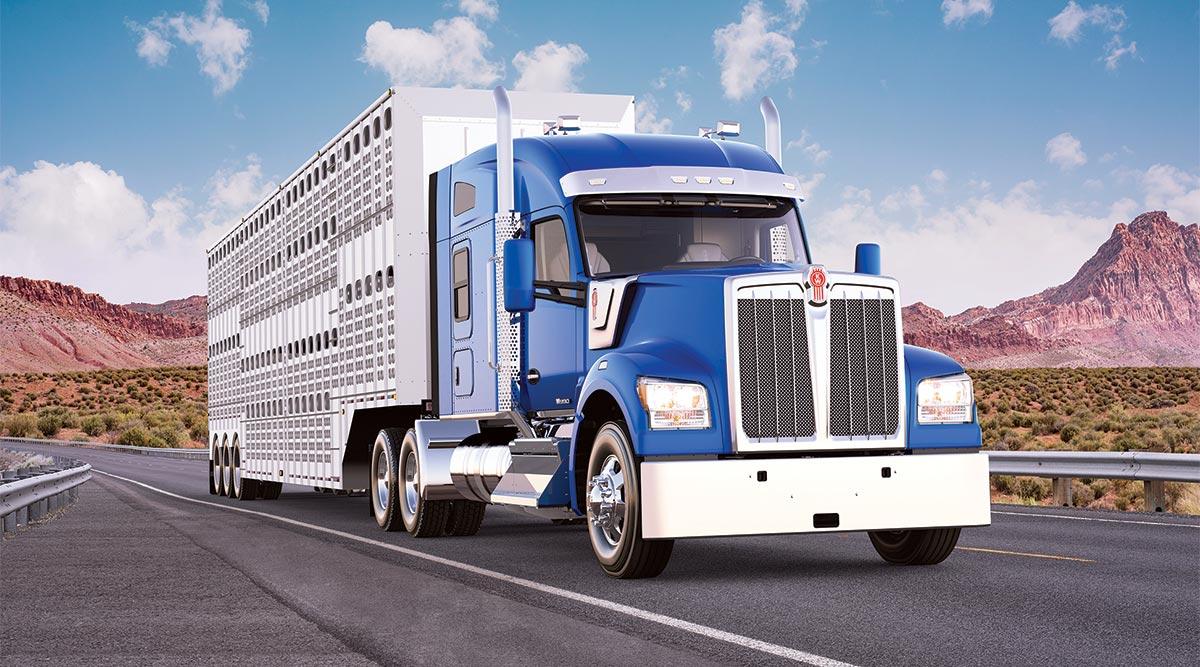 A truck hauling livestock