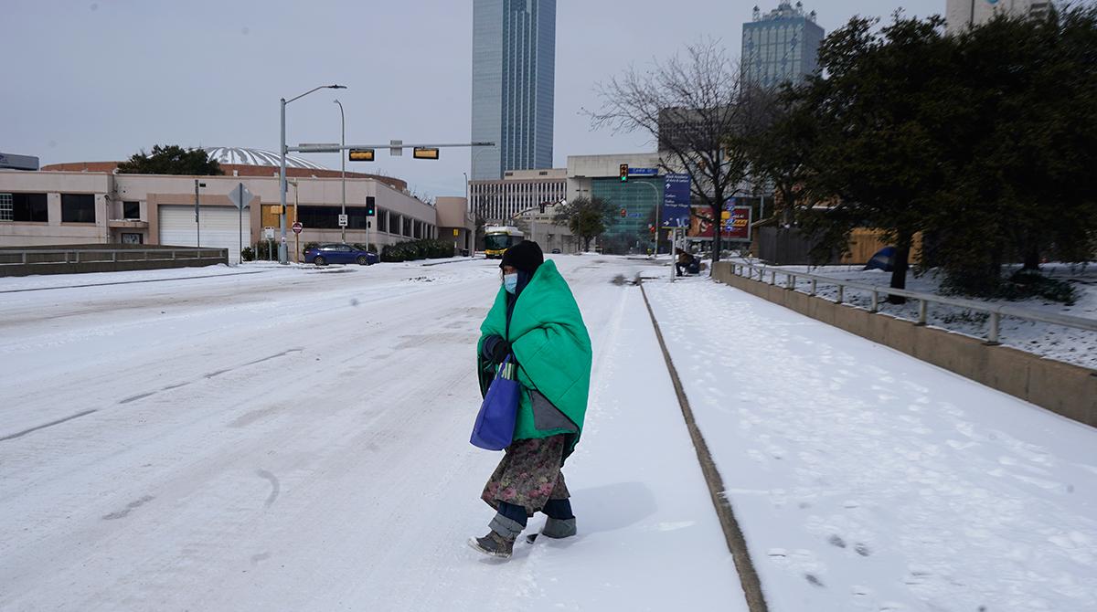Dallas freeze