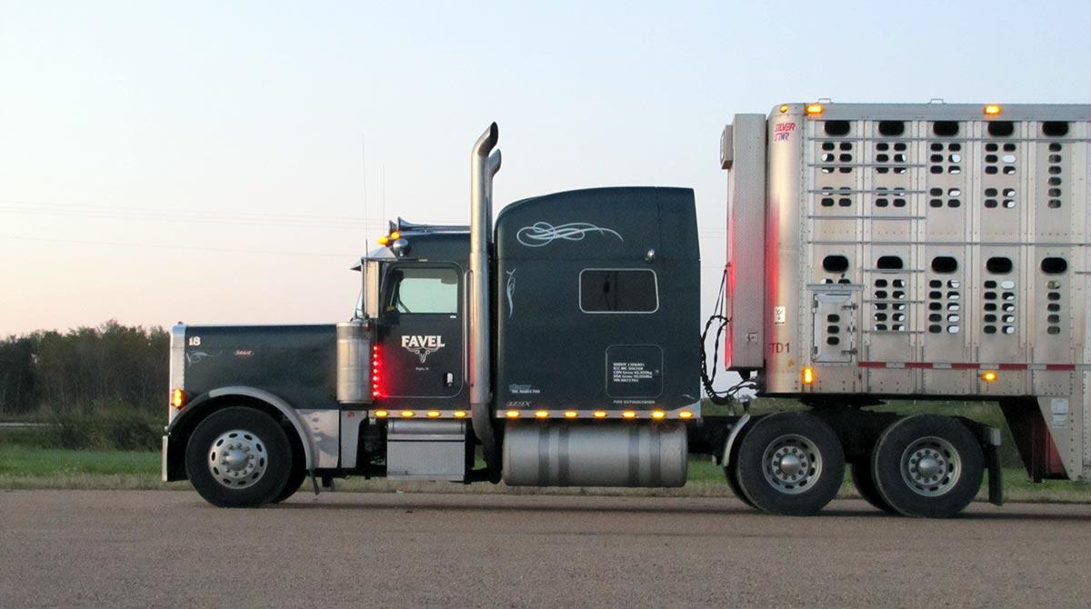 A livestock truck