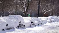 Cars parked for several days in Chicago Feb. 16, 2021 are covered in cumulative snow.