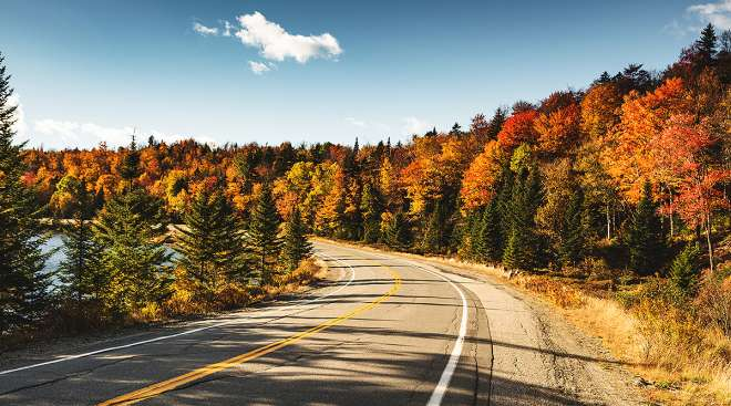 A road in Maine with trees in fall colors