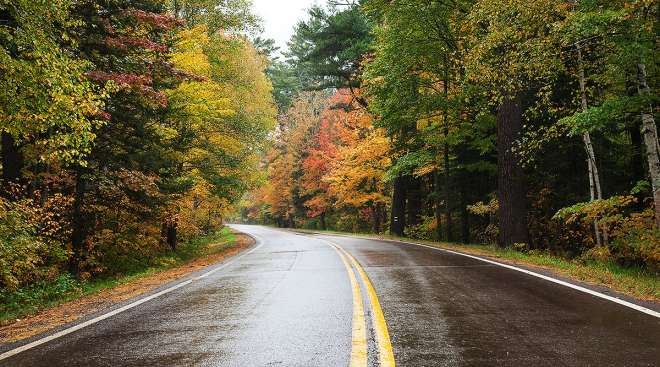 Minnesota road with autumn color
